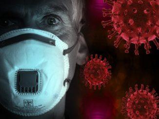 Coronavirus: Origins and Impacts