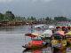 The Kashmir Question